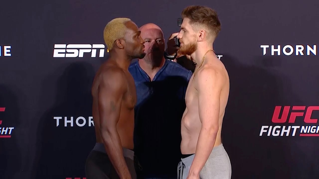 UFC Вегас 5: Битвы взглядов